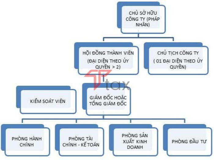 Một mô hình công ty TNHH 1 thành viên do tổ chức làm chủ sở hữu